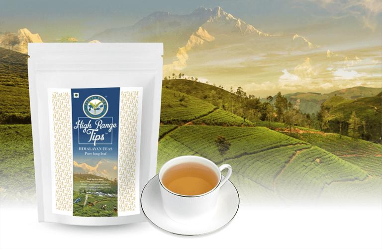 Teesta River Beverages Pvt  Ltd  - Speciality Tea Manufacturers